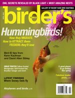 RufousHummingbirdCover